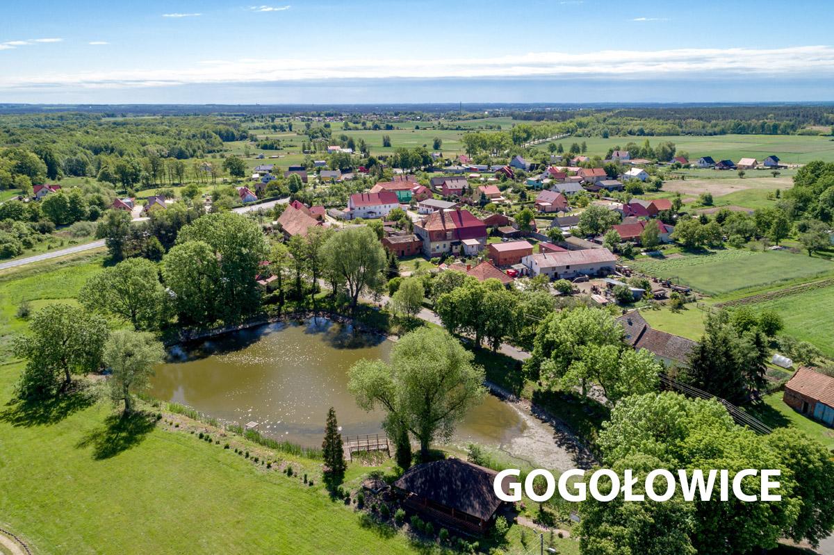 Widok na wioskę Gogołowice z jeziorem