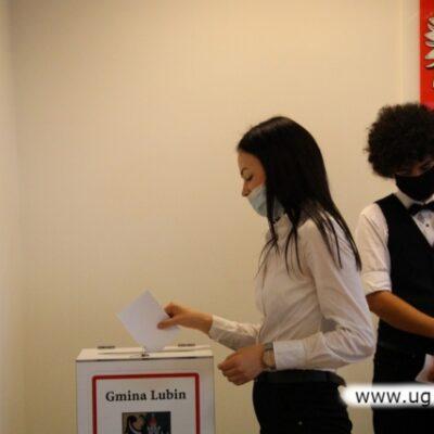 Głosowanie do urny