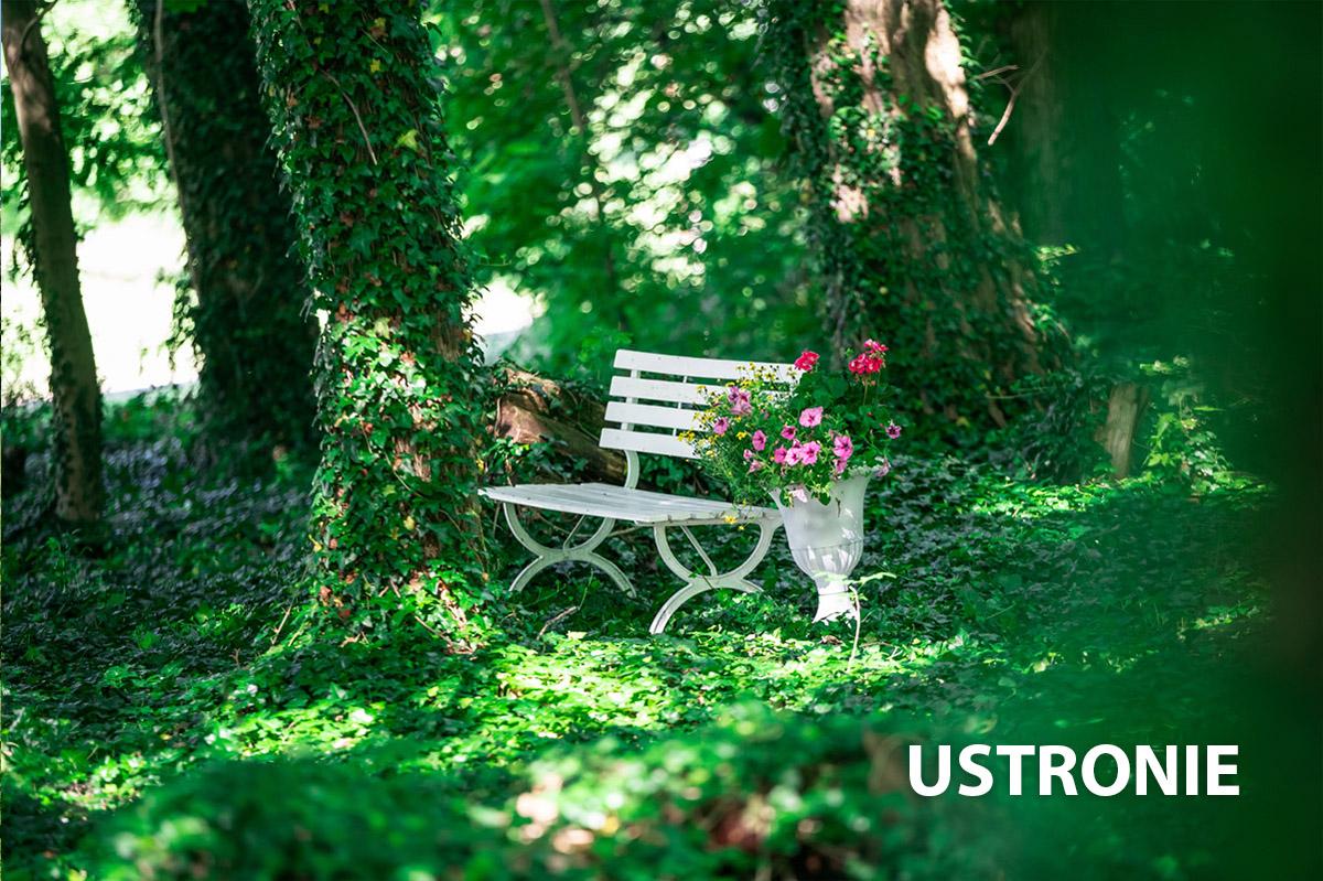 Zielony park w Ustroniach