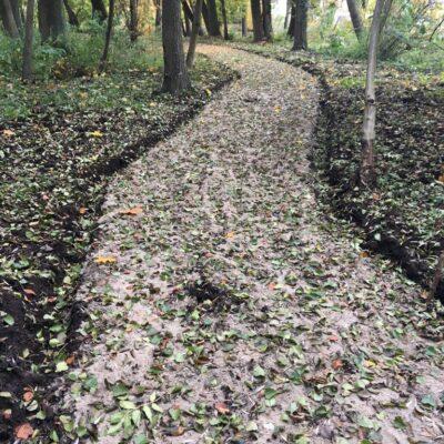 Wytyczane zostają nowe ścieżki przyrodnicze.