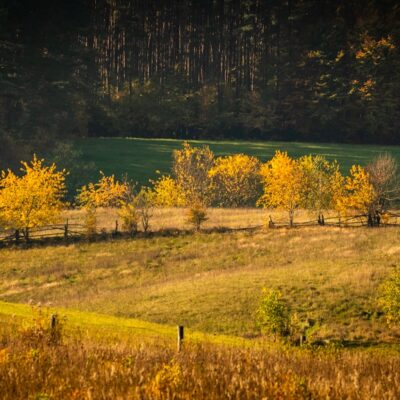 Jesień w obiektywie- Warmińska Jesień - Łukasz Knop