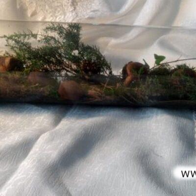 Kompozycja w szkle - las w słoiku.